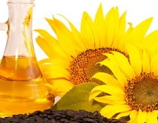 Україна завоювала ринок соняшникової олії в Індії