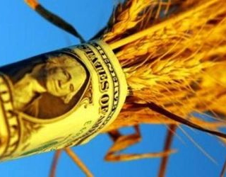 Експорт сільгосппродукції перевищив 10 млрд доларів США
