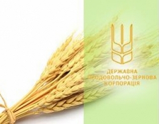 На рахунки ДПЗКУ повернули 229 млн грн