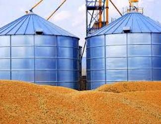 Компанії — лідери з продажу зерна за кордон