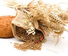 В Австралії збільшили премію за високий уміст білка в пшениці