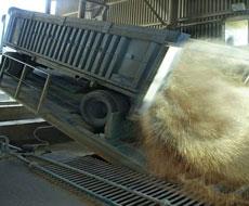 Сільгоспвиробництво в Україні збільшилося на 2,9%