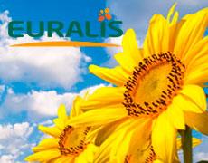 Компанії Euralis виповнилося 80 років з дня заснування