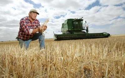 Уряд схвалив законопроект «Про стимулювання розвитку агропромислового комплексу України»