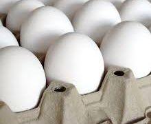 З початку року в Україні трохи зросло виробництво яєць