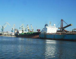 Понад 60% вантажів, перевалених терміналом «Ніка-Тера» в січні, склали зернові