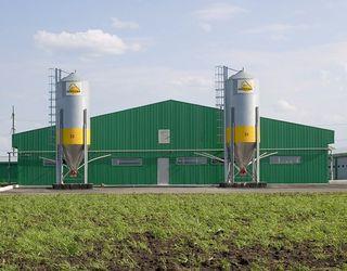 «АПК-Інвест» завершив минулий рік із чистим прибутком 253 млн грн.