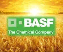 Минулого року BASF в Україні збільшив обсяг продажів на 12%