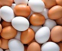 За січень-травень в Україні вироблено 6,4 млрд штук яєць