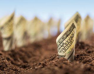 У 2018 році Кабмін планує надати АПК 6 млрд грн. держпідтримки