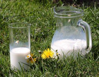 Середня ціна на молоко екстра-ґатунку перетнула межу 8 грн.