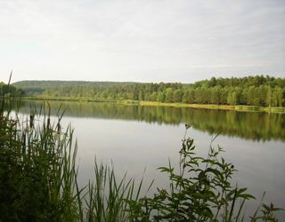 На аукціоні вартість права оренди на водний об'єкт на Львівщині зросла майже в 40 разів