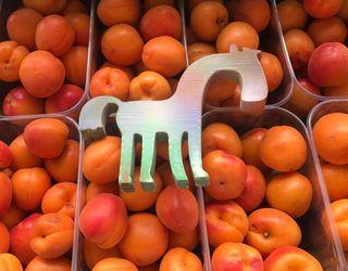 «Коник» отримав перший урожай абрикосів у своєму саду