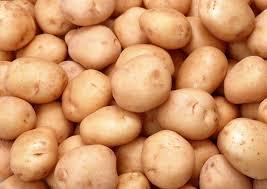За І півріччя 2017 року експорт української картоплі на 68% перебільшив увесь минулорічний обсяг