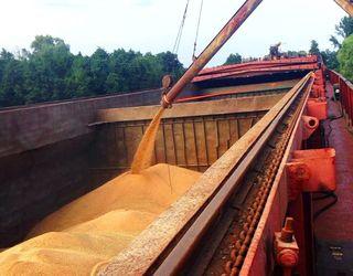 Україна експортувала з початку 2017/18 МР 1,8 млн тонн зерна