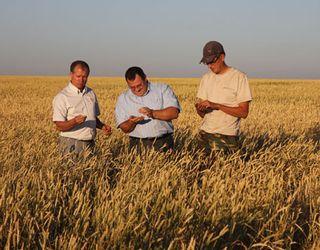 Кооператив ПУСК до кінця року планує подвоїти кількість учасників і збільшити земелний банк до 200 тис. га