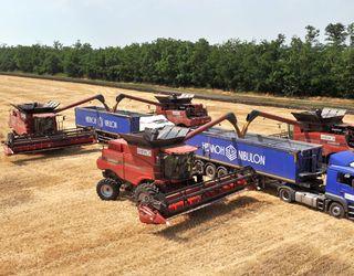 «НІБУЛОН» зібрав урожай ранніх зернових і технічних культур на рівні минулого року