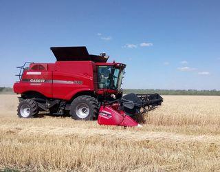 Житомирські аграрії завершили жнива ранніх зернових і зернобобових