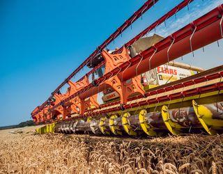 Alebor Group зібрала врожай ранніх зернових