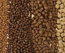 Житомирщина збільшила виробництво кормів на 35%