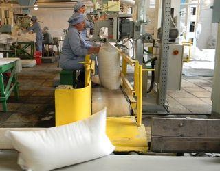 Вінницькі заводи вже виготовили 83 тис. тонн цукру