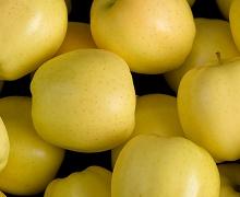 Українські яблука зросли в ціні, однак впали в якості
