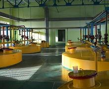 «Укрспирт» планує модернізувати виробничі потужності