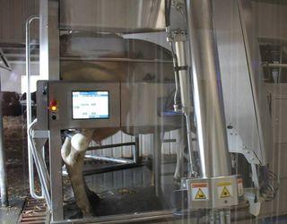 Донецька агрокомпанія використовує роботів для доїння корів