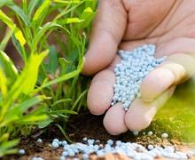 ОККО продаватиме аграріям мінеральні добрива