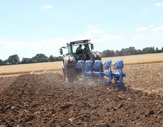 Відсутність зяблевого обробітку ґрунту значно зменшує врожайність сорго і соняшникуВідсутність зяблевого обробітку ґрунту значно зменшує врожайність сорго і соняшнику