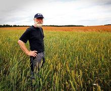 Фермерським господарствам розміром до 100 га хочуть спростити звітність й оподаткування