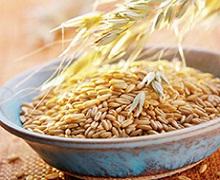 Врожай зернових і зернобобових культур цього року зменшиться на 6%