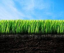 Законопроект щодо ринку землі подадуть до парламенту в лютому-березні 2018 року, ‒ Козаченко