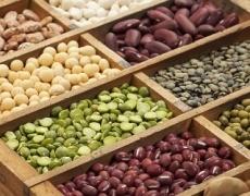 Компанія з Хмельниччини пропонує аграріям спільне виробництво нішевих культур