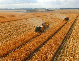 В Україні зібрано майже 60 млн тонн зерна
