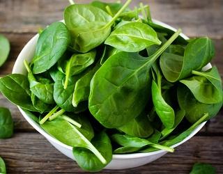 Вирощування шпинату: за рік можна зібрати три врожаї