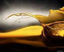 Світові ціни на олію в листопаді були найвищими за останні 9 місяців