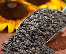 Цьогорічний врожай соняшнику зменшився на 1,1 млн тонн