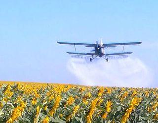 Депутати пропонують посилити відповідальність за порушення законодавства у галузі бджільництва