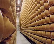 «Молочний альянс» здійснив перші поставки сирів до ОАЕ та США