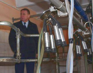 Волинський фермер збудував доїльний міні-зал