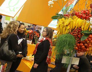 Вперше на виставці Fruit Logistica у Німеччині буде представлений стенд України