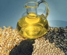 З початку сезону експорт олійних склав 3,7 млн тонн