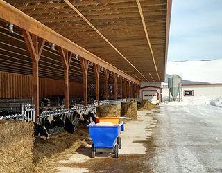 Реконструювати старі тваринницькі ферми дешевше дерев'яними конструкціями