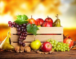 Цього року реально отримати понад 2 млн тонн фруктів, ягід і горіхів, – думка