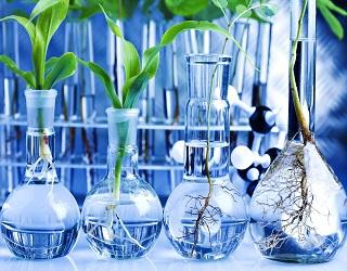 У Кропивницькому з'явиться сучасна аграрна лабораторія