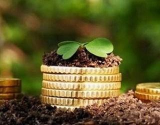 На Дніпропетровщині оформили перші три аграрні розписки