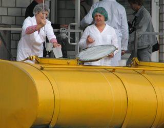 На Львівщині може з'явитися перший в області кооперативний молокопереробний завод