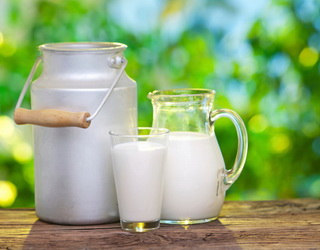 Умовна прибутковість виробництва молока впала в березні на 8,7%