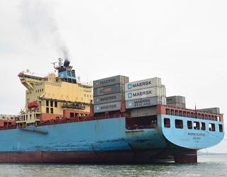 ТІС переправлятиме агропродукцію в Індію і Емірати суднами Maersk